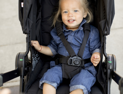 Giveaway: 180 Reversible Stroller from Ergobaby